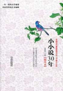 《小小说30年 中国当代最具影响力的120篇小小说》(精华本)